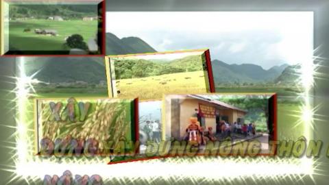 CM Xây dựng nông thôn mới ngày 31/5/2020