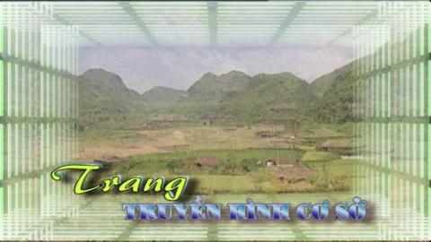 Trang truyền hình cơ sở - Số 43/2020