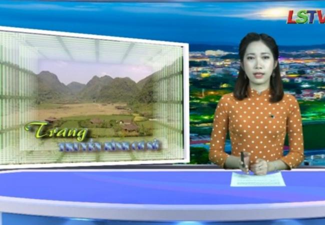 Trang truyền hình cơ sở - Số 23/2020